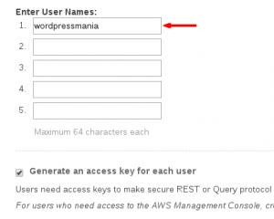 Pantalla añadir nombre de usuario en IAM de amazon